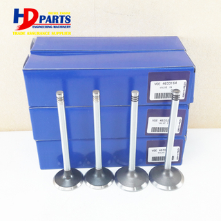 Volvo Engine Part EC290 D7D Intake Valve And Exhaust Valve