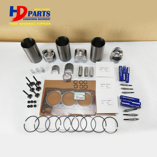 Diesel Engine Spare Parts D1005 Engine Repair Kit